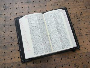 デイリーコンサイス英和・和英辞典カバー(ハンディータイプ)商品画像005:辞書を入れた時の画像です。